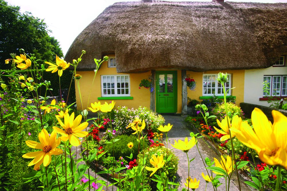 Picturesque thatched cottages