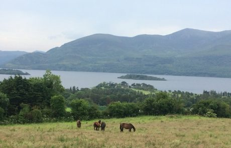 Killarney National Park Private Tour